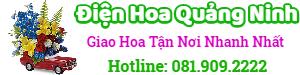 Điện hoa Quảng Ninh – LH: 081.909.2222, đặt hoa online, giao hoa tại nhà, shop hoa tươi, cửa hàng hoa tươi tại Hạ Long Quảng Ninh